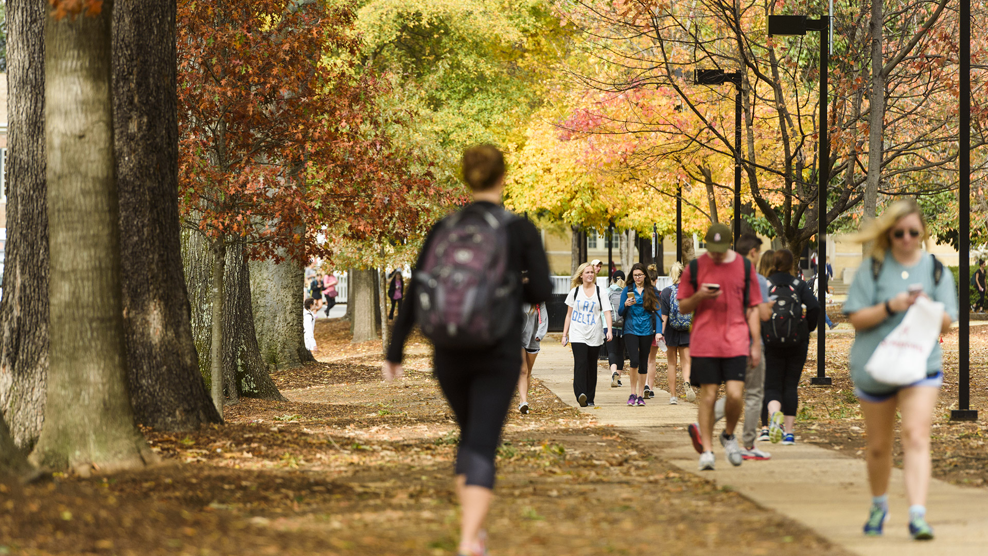 Story Image - Students walking on campus in the fall