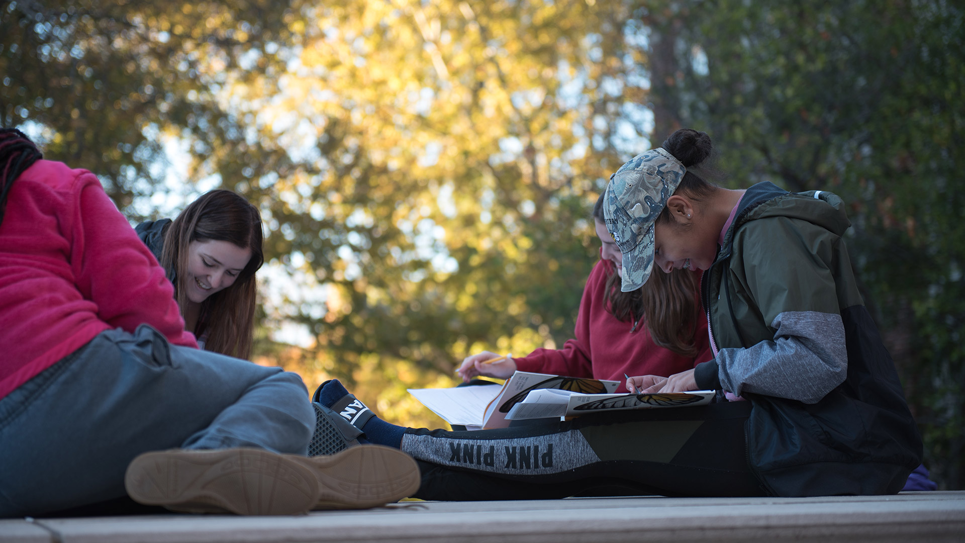 Story Image - Students in a group studying