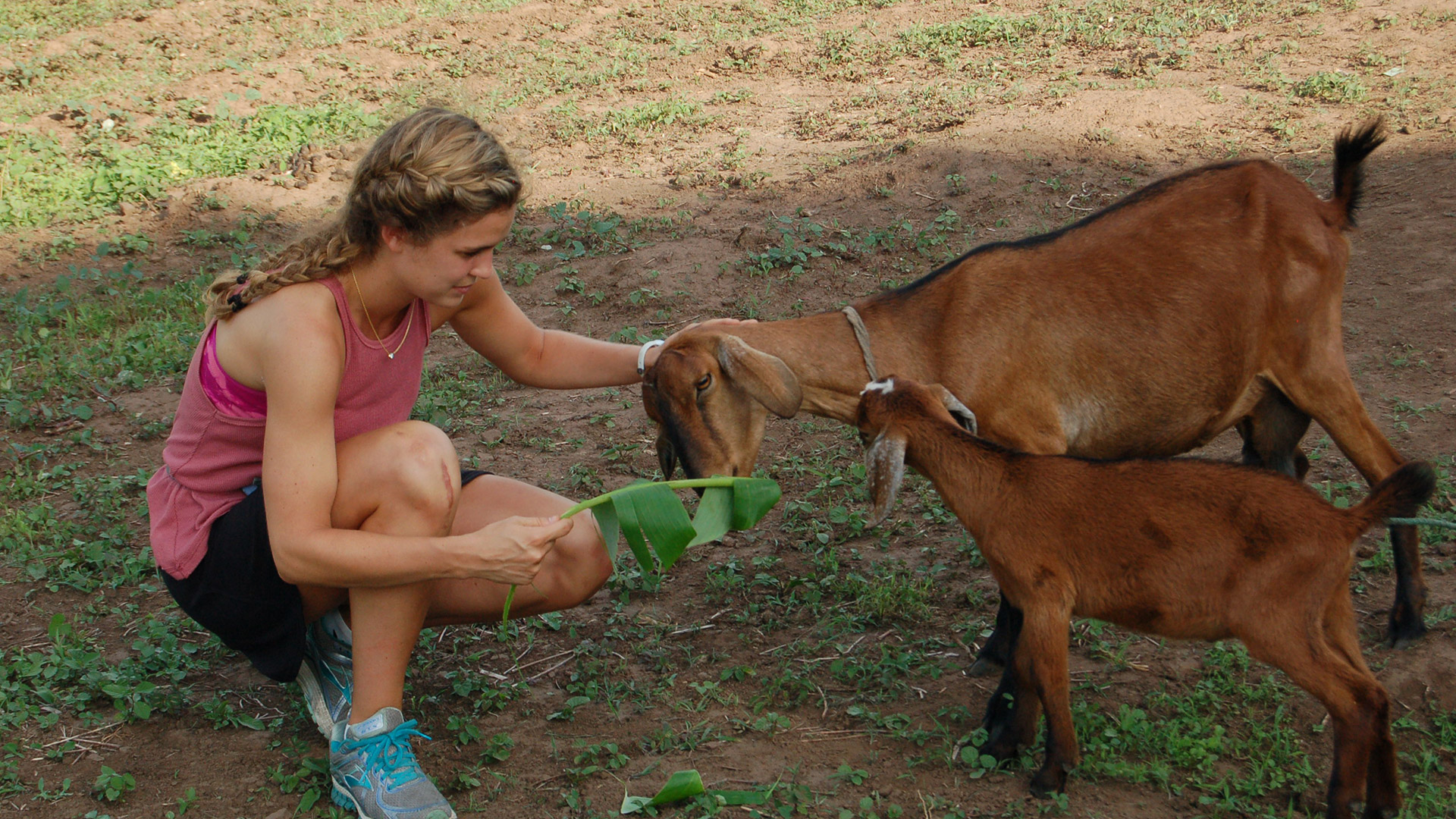 Story Image - Alex with two goats in Nicaragua